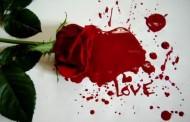هل المسئولية اقوي ام الحب اقوي