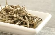 هل سمعت عن الشاي الابيض وفوائده الكثيره
