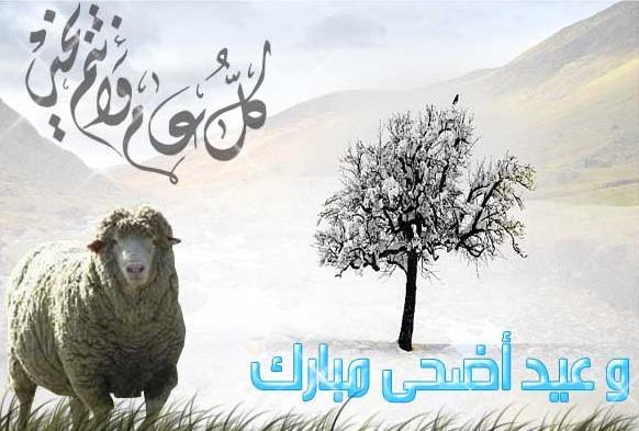 عيد أضحي مبارك